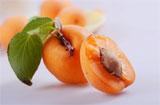 止咳好功效的杏肉什么人不能食用?