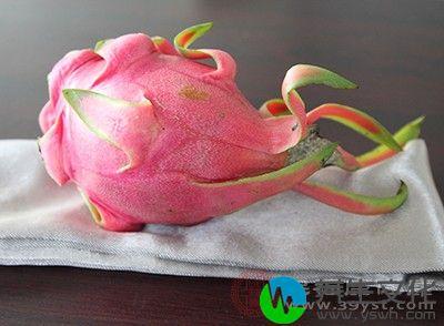 火龙果中丰富的花青素能改善血液循环