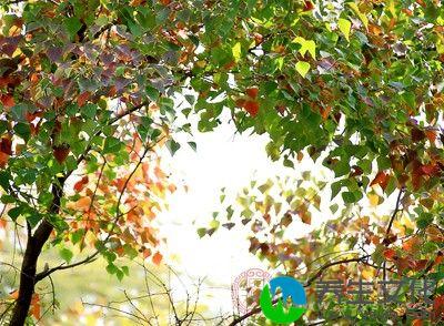 据史书记载,早在周朝,古代帝王就有春分祭日、夏至祭地、秋分祭月、冬至祭天的习俗