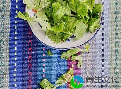 春笋、菠菜、芹菜、韭菜、莴苣、葱