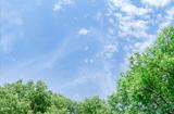 最养心的夏季作息时刻表,养生的最高境界!