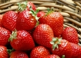 金秋果飘香 三种水果最润肠